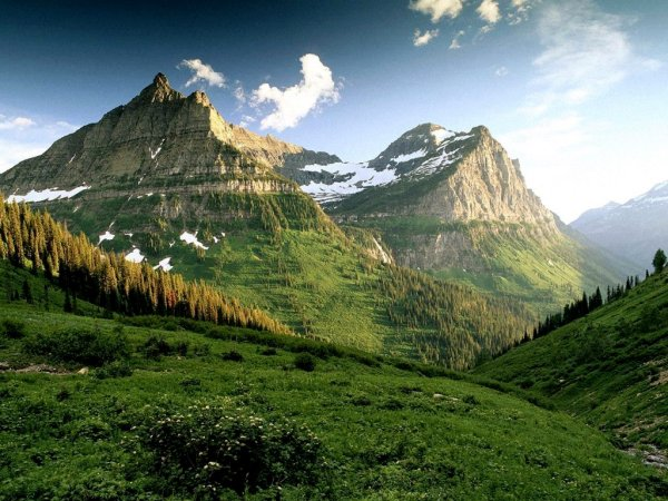 Amazing-green-mountains-with-trees-lanscape-wallpaper.jpg